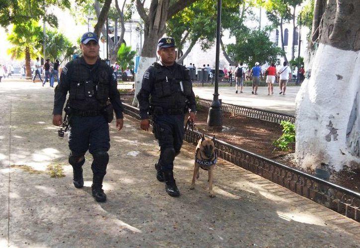 Agentes de la Policía Municipal de Mérida durante vigilancia de rutina en la Plaza Grande de la capital yucateca. (Foto: Cortesía PMM)