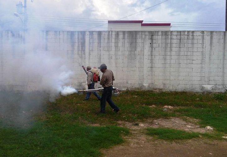 Los trabajos de fumigación continuarán una vez que el clima mejore. (Cortesía/SIPSE)