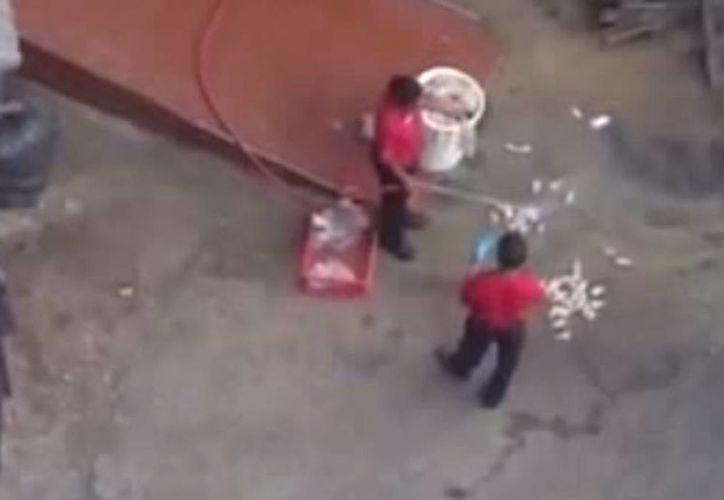 Imagen de los trabajadores del restaurante que lavan a 'manguerazos' las piezas de pollo que están en el suelo. (Captura de pantalla de YouTube)