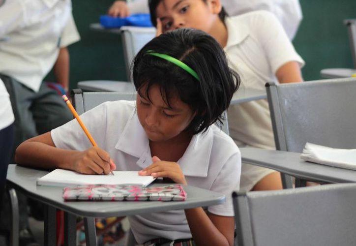 Las becas que entrega la FPMC son para estudiantes que tienen promedio mínimo de nueve en aprovechamiento escolar. (Gustavo Villegas/SIPSE)