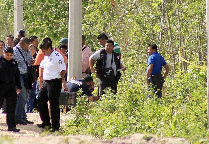 El cuerpo de la adolescente fue hallado en un camino de terracería, entre las regiones 205 y 251. (Redacción/SIPSE)