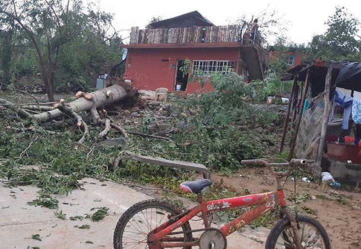 Unas 70 familias  perdieron completamente los techos de lámina o cartón de sus casas. (Foto: La Jornada)