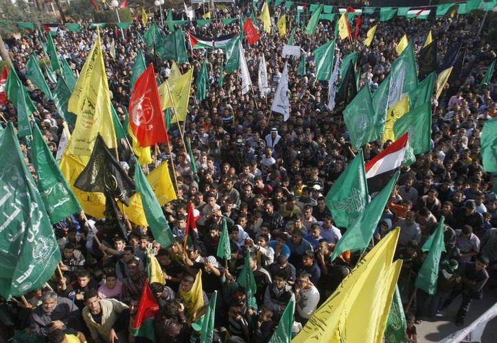 Palestinos celebran el cese al fuego entre Israel y el grupo islámico Hamas. (Agencias)