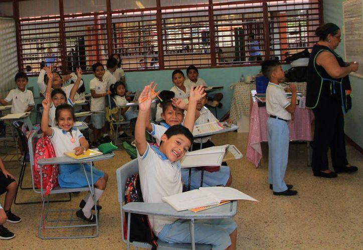 La gran demanda y la falta de difusión, dificulta el acceso a los estudiantes. (Paola Chimante/SIPSE)