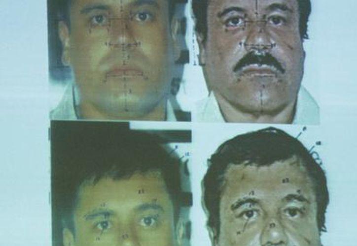 Comparativo de fotos de la PGR sobre Joaquín Guzmán Loera. Sin bigote, en 1993, y con bigote poco después de su arresto, hace unos días. (Notimex/Archivo)