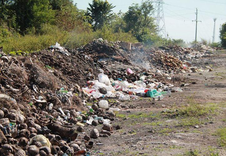 El camión de recoja de basura pasa un vez por semana, los domingos. (Javier Ortiz/SIPSE)