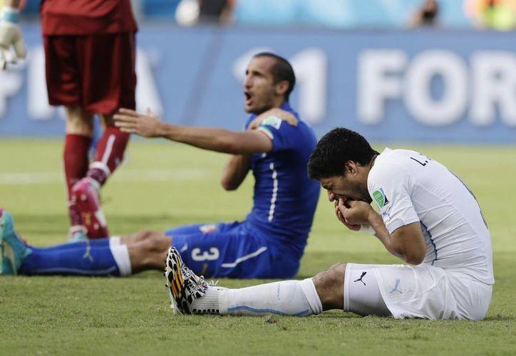 Giogio Chiellini se duele del hombro, tras ser mordido por Suárez. (AP)