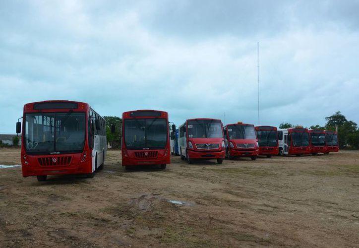 Llegaron a Chetumal ocho camiones de la empresa Jet Van Car, que entrará en funciones este viernes. (Gerardo Amaro/SIPSE)