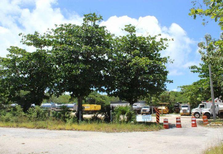 El proyecto de la avenida que conectaría a la Cobá sur con la zona arqueológica ingresó el proyecto para análisis el 29 de marzo. (Sara Cauich/SIPSE)