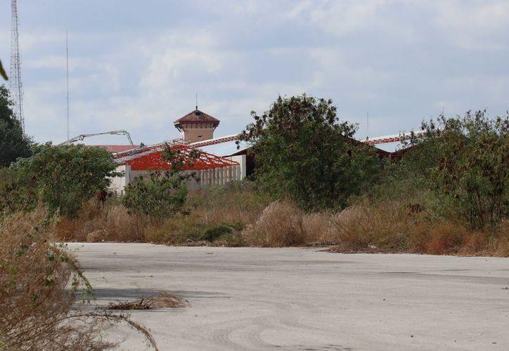 Afirman que la ciudad requiere de un nuevo parque. (Fotos: José Acosta/Novedades Yucatán)