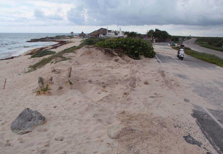 De acuerdo con la denuncia presentada ante la Profepa por parte del grupo ambientalista Citymar, fueron extraídos unos 40 metros cúbicos de arena en la zona oriental de la Isla de las Golondrinas. (G. Villegas/ I. Canu/SIPSE)