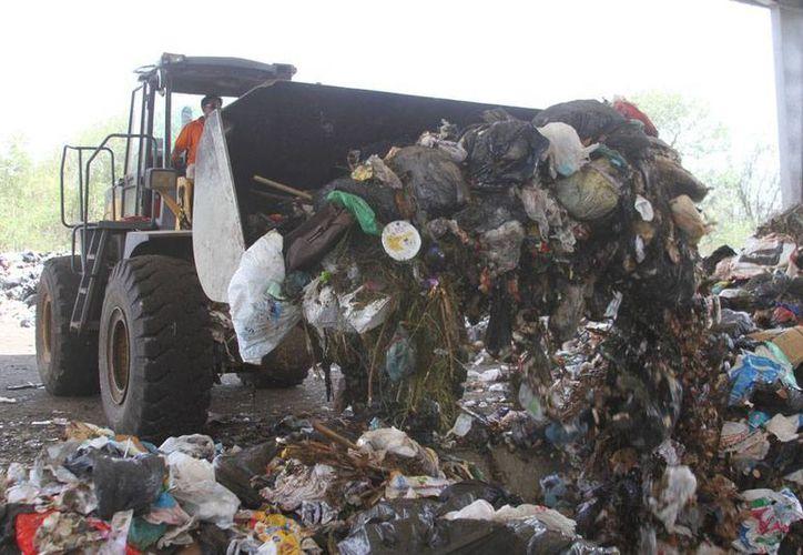 La planta de separación de basura que maneja la empresa TRS se consolida como la más eficiente del país, no sólo ya está procesando el 50 por ciento de las más de 800 toneladas de desechos diarios. (César Gónzalez/SIPSE)