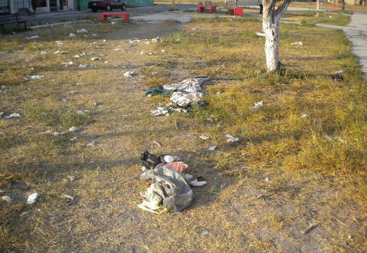 Siresol visitó cinco parques en los que se recolectaron una tonelada de basura en cada uno. (Foto de Contexto/Internet)
