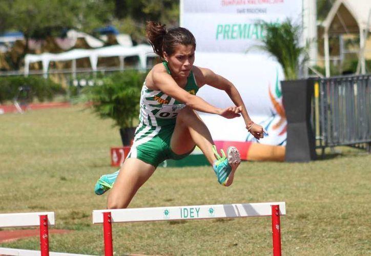 Yucatecos que competirán en voleibol de sala, triatlón, atletismo, tae kwon do, polo acuático, etc, en la Olimpiada y el Campeonato Nacional Juveniles 2016   serán abanderados este jueves en Mérida. (Milenio Novedades)