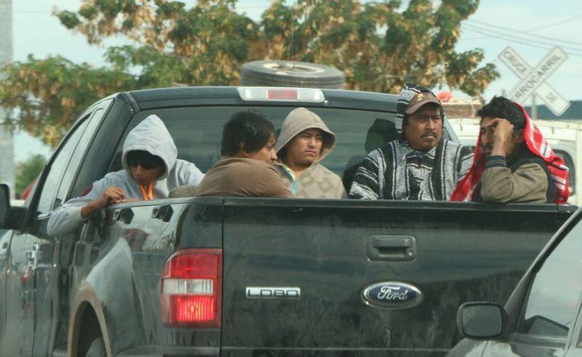 Debido a la llegada de otro frente frío la Conagua pronostica más amaneceres y noches frescas en Yucatán. (José Acosta/Milenio Novedades)