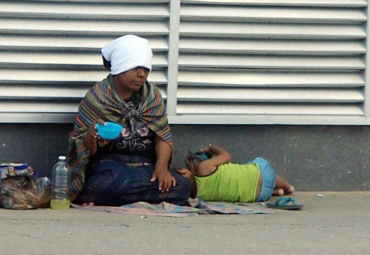 Existen familias que sufren de múltiples carencias. (Luis Soto/SIPSE)