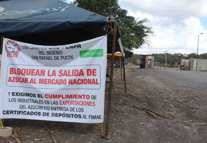 Cañeros volvieron a bloquear el ingenio San Rafael de Pucté. (Carlos Castillo/SIPSE)