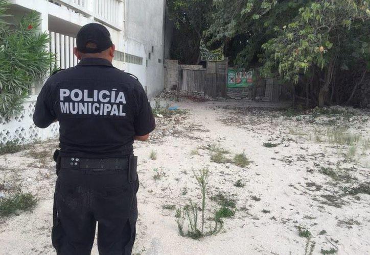 Un policía de Progreso vigila el predio donde se halló el cuerpo de una persona. (Óscar Pérez/SIPSE)