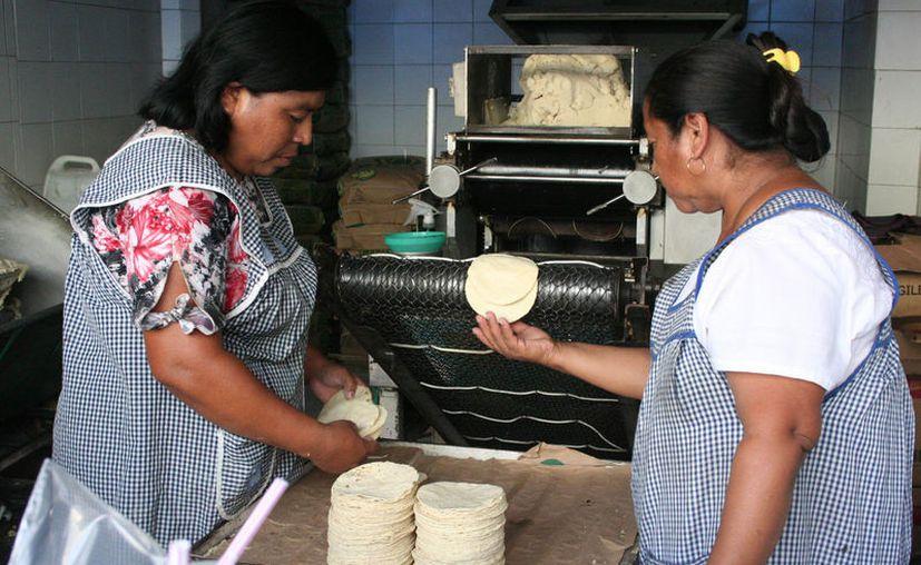 Afirman que se está desarrollando un proyecto para dignificar a las tortillerías tanto en Mérida como en el interior del Estado. (Archivo/Novedades Yucatán)