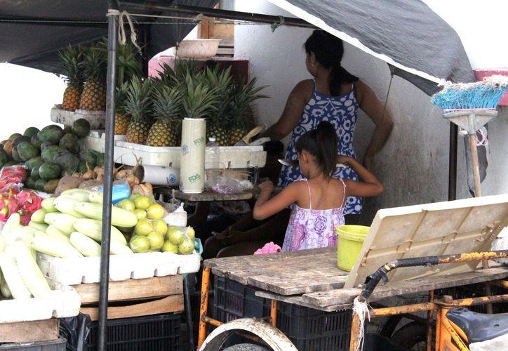 Más de 20 mil niños y niñas trabajan en Q. Roo, de acuerdo con cifras del Inegi, de éstos, la mitad ponen en riesgo su integridad.  (Joel Zamora/SIPSE)