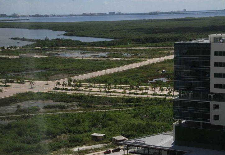 Quintana Roo ha sido pionero y marca la pauta en cuestiones relacionadas al cuidado y protección del medio ambiente. (Israel Leal/SIPSE)