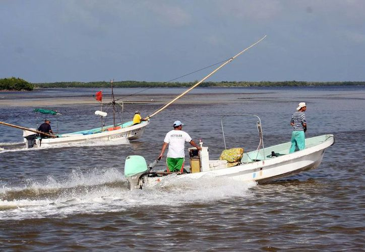 La pesca de mero creció durante 2015. Imagen de pescadores a bordo de sus lanchas en la costa de Yucatán. (Milenio Novedades)