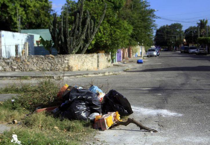 En varias partes de la ciudad se observan bolsas de basura. (Christian Ayala/SIPSE)