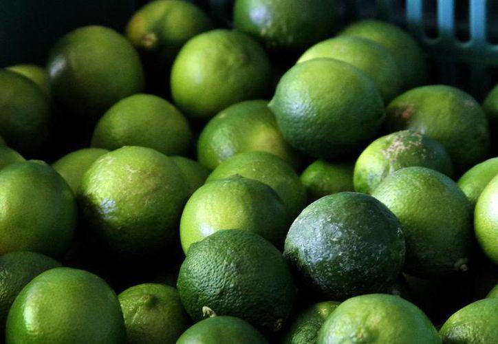 Se ha mantenido estable el precio del limón en Mérida. (Notimex)