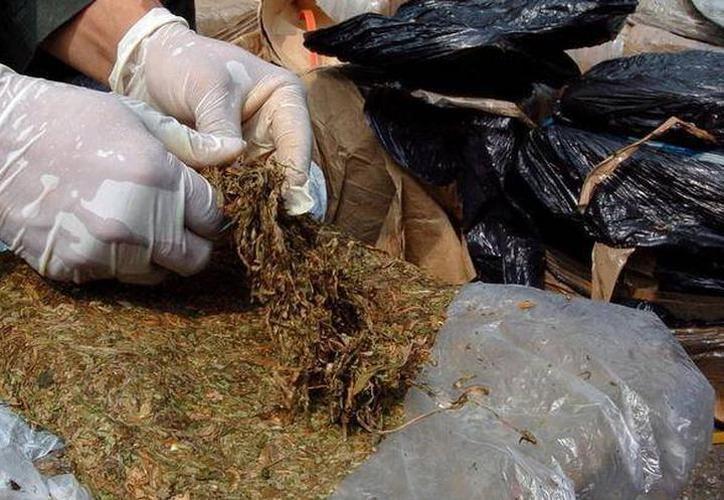 Elementos de la Policía Municipal de Hunucmá, lo detuvieron en febrero de 2015, en posesión de cerca de ocho kilogramos de marihuana. (SIPSE)