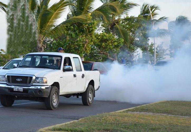 Los focos rojos se dan mayormente en las zonas urbanas, ciudades como Chetumal, Cancún y Playa del Carmen. (Foto: Joel Zamora/SIPSE)