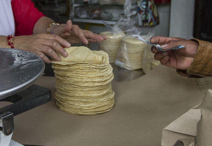 El aumento al precio en los insumos provocaría que el costo de la tortilla suba. (Foto: Posta.com)