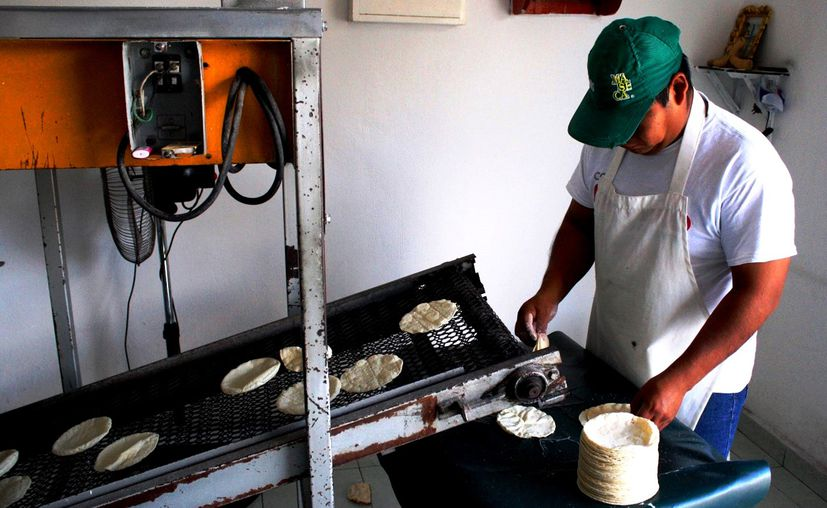 a partir de octubre comenzarán a multar con 200 a 800 salarios mínimos a tiendas que aún vendan tortillas. (Foto: Octavio Martínez)
