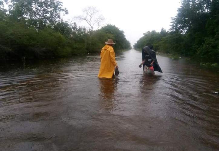 Varias zonas de los municipios están inundadas debido a las lluvias de la onda tropical número cuatro. (Redacción/SIPSE)