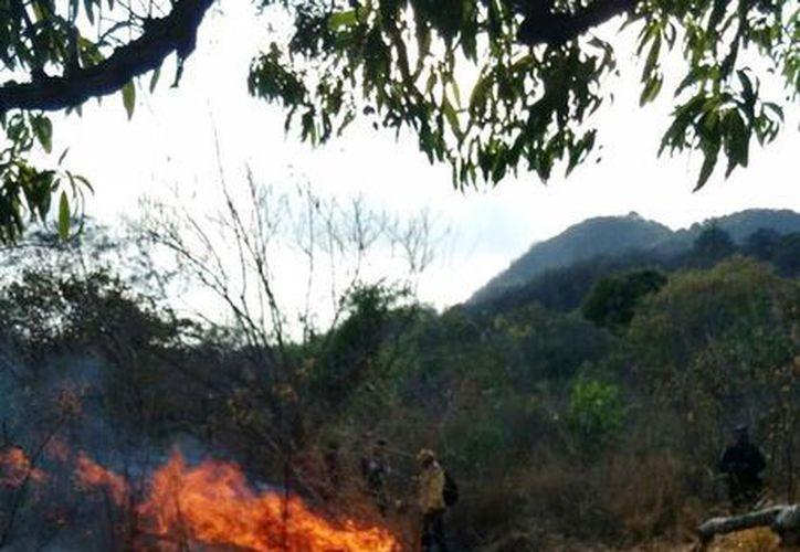 Un incendio afectó tres hectáreas de pastizales del Parque Nacional El Veladero, en Acapulco. Imagen del lugar del siniestro. (@CONAFOR)