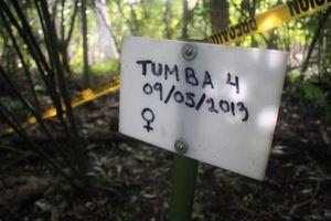 Deja de operar el Cementerio de Mamíferos Acuáticos