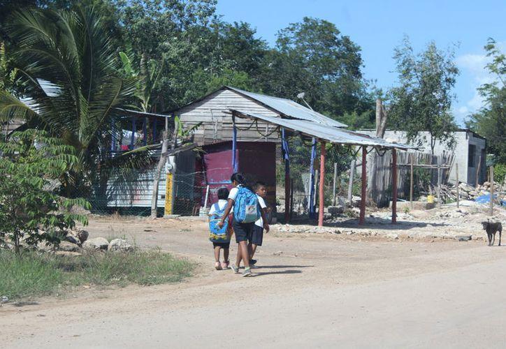Las familias de Quintana Roo afectadas por alguna contingencia recibirán al menos $2,568 al mes. (Daniel Tejada/SIPSE)