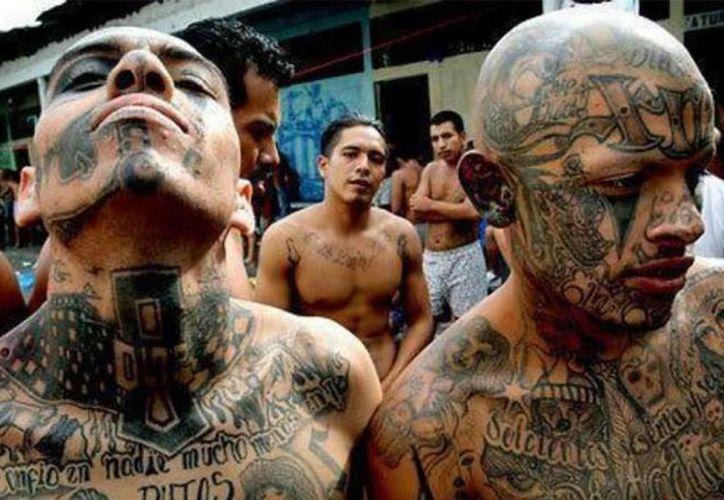 Los tatuajes con los que expresan su pertenencia simbolizan el vínculo indestructible que les une a esas pandillas. (chartcons.com)