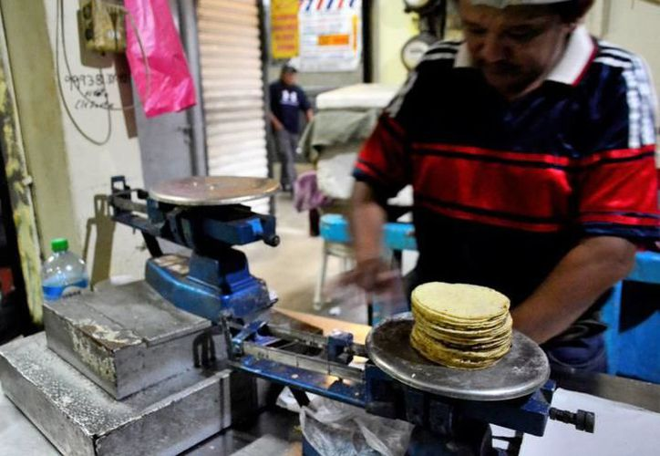 Buscan reducir costos para no incrementar el costo del kilo. (Milenio Novedades