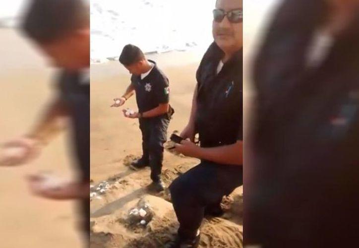 Un turista cuestionó a los policías sobre por qué estaban lanzando los huevos de tortuga al mar. (Captura de pantalla/YouTube)