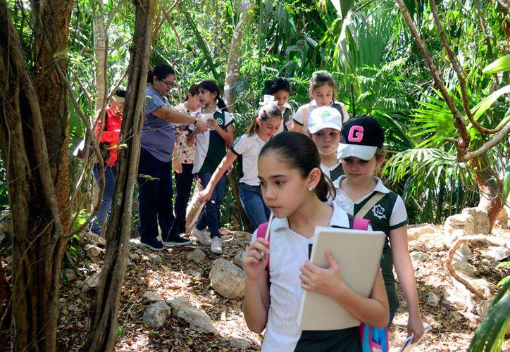 En marzo pasado, el CICY abrió una puerta al conocimiento. Se trata del Centro de Atención al Visitante, a fin de que los niños conozcan de cerca del trabajo de conservación de especies vegetales, algunas de ellas en peligro de  extinción. (Daniel Sandoval/SIPSE)