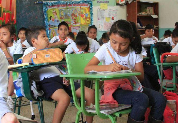 En total se han registrado 31 mil alumnos, de los cuales 15 mil son de nuevo ingreso. (Ángel Castilla/SIPSE)