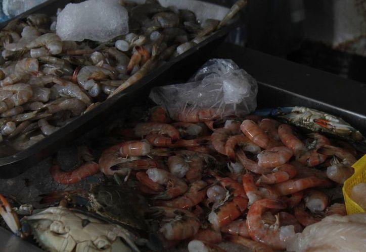 Durante el 2013, la Profeco colocó 100 preciadores en negocios que se dedican a la venta de mariscos. (Israel Leal/SIPSE)