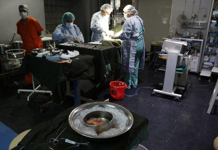 En Bolivia no existe un registro oficial de personas que estén dispuestas a donar un órgano. (AP)