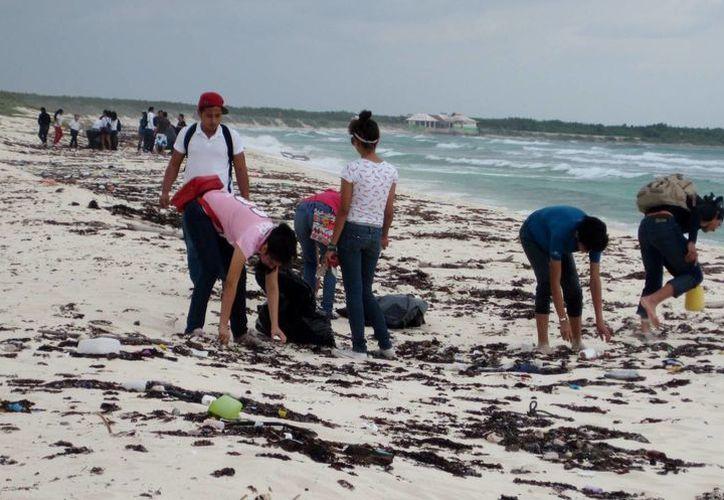 Durante la labor se recolectaron 42 bolsas grandes de basura. (Cortesía/SIPSE)