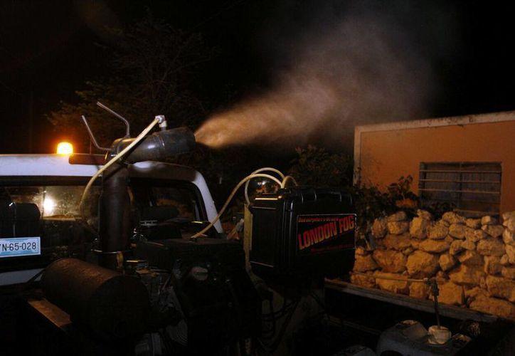 En vehículos equipados se roció insecticida en Motul. (SIPSE)