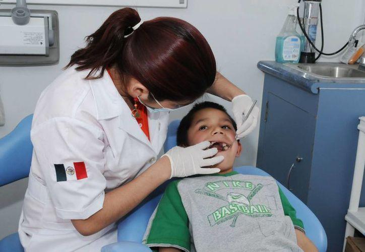 Recomiendan a los padres de familia no asociar el dolor con ir al dentista porque se crean una imagen errónea de la revisión dental. (Milenio Novedades)