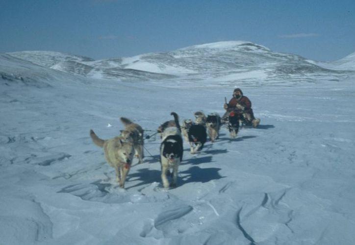 La fría región de Siberia se prepara para recibir el 21 de diciembre. (Foto tomada de internet)