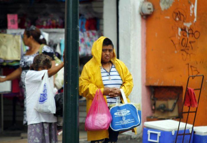 Los expertos insisten en la prevención para aminorar los daños por huracanes. (Christian Ayala/SIPSE)