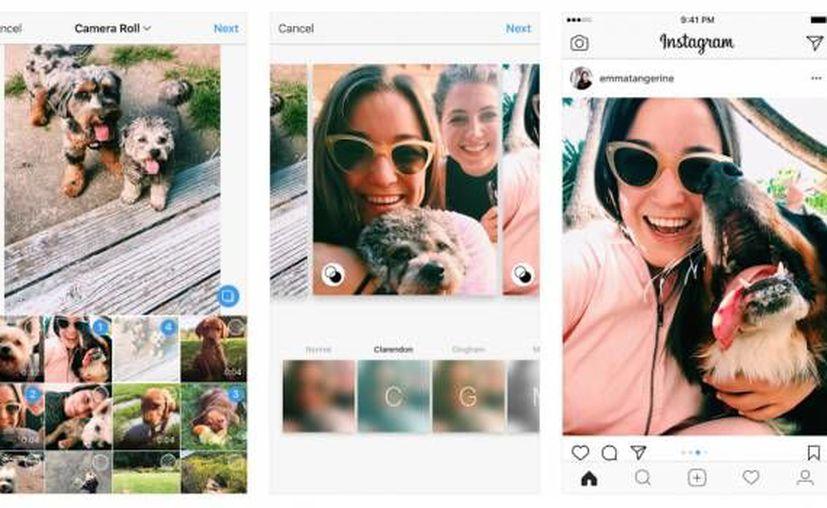 Una nueva actualización de la aplicación móvil nos permite aplicar los formatos Paisaje y Retrato en los álbumes de Instagram. (Instagram).