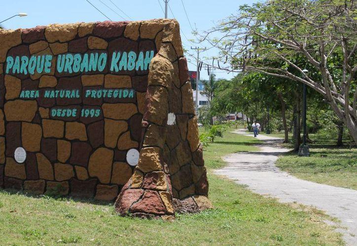 El Parque Kabah es visitado por más de 700 personas al día. (Sergio Orozco/SIPSE)